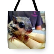 Nosey Flyer Tote Bag