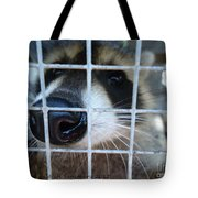 Nosey Tote Bag