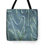 Nostoc Algae Tote Bag