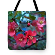 Not So Crabby Tote Bag