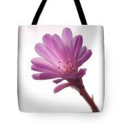 Notocactus Herderii Flower Tote Bag