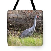 November Sandhill Crane Tote Bag