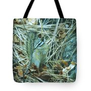 Now Just Where Did I Put That Acorn Tote Bag