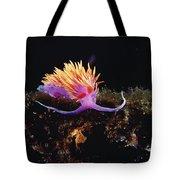 Nudibranch Brightly Colored Arctic Ocean Tote Bag