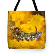 Nudibranch On Sponge Tote Bag
