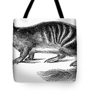 Numbat Tote Bag