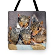 Nut Brothers Tote Bag