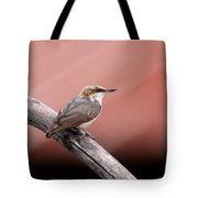Nuthatch - Bird - Barn Roof Tote Bag