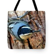 Nuthatch Heading Down Tote Bag