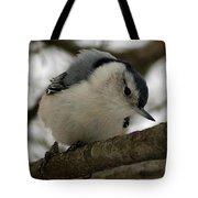 Nuthatch I Tote Bag