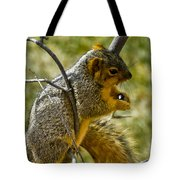 Nuts And Seeds Make A Great Lunch Tote Bag