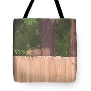 Nuts For A Squirrel Tote Bag