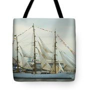 Nve Cisne Branco Passing By Fort Mchenry Tote Bag