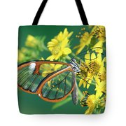 Nymphalid Butterfly Pteronymia Sp Tote Bag