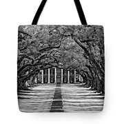 Oak Alley Monochrome Tote Bag by Steve Harrington