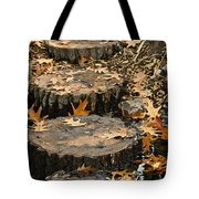 Oak Creek Steps Tote Bag