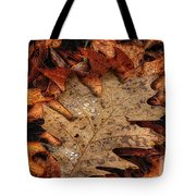Oak Leaf 1 Tote Bag