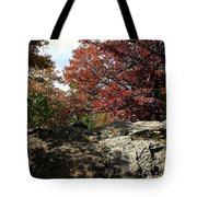 Oak Rock Tote Bag
