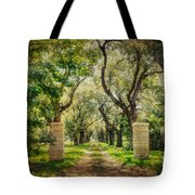 Oak Tree Lined Drive Tote Bag