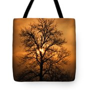 Oak Tree Sunburst Tote Bag
