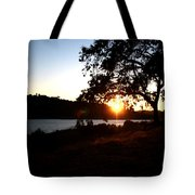 Oak Tree Sunset Tote Bag