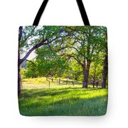 Oak Trees In The Spring Tote Bag