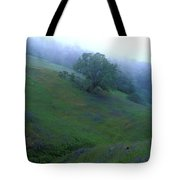 Oak With Lupine In Fog Tote Bag by Kathy Yates