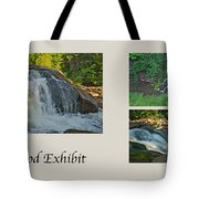 Oakwood Exhibit Tote Bag