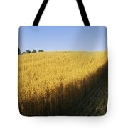 Oat Crops On A Landscape, County Dawn Tote Bag