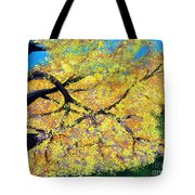 October Fall Foliage Tote Bag