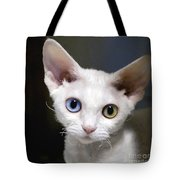 Odd-eyed Kitten Tote Bag