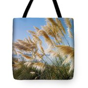 Of Sun And Sky And Wind Tote Bag