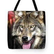 Of This Earth Tote Bag