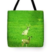 Oh For The Love Of Pete Tote Bag