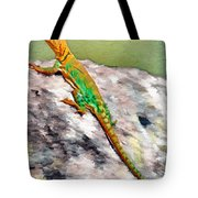 Oklahoma Collared Lizard Tote Bag by Jeff Kolker