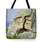 Okotoks Erratic -  Tote Bag