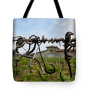 Old And New  Tote Bag by Lainie Wrightson