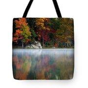 old Autumn Tote Bag