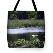 Old Fishing Hole Tote Bag