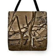 Old Homestead Tote Bag by Shane Bechler