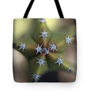 Old Man Cactus Lophocereus Schottii Tote Bag