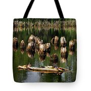 Old Pier Pylons Tote Bag