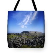 Old Ruins Of A Fort On The Landscape Tote Bag