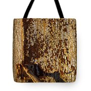 Old Rusty Door Tote Bag