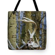 Old Skull And Antlers Tote Bag