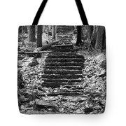 Old Stone Steps Tote Bag