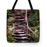 Old Wet Stone Steps Tote Bag