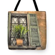 Old Window And A Green Plant Tote Bag