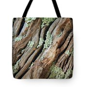 Old Wood And Lichen Tote Bag
