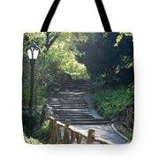 Oldbridge Steps Tote Bag